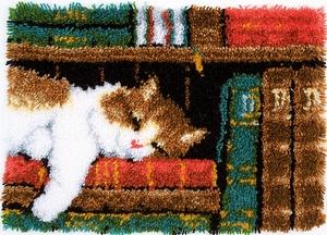 Slapende kat in boekenrek