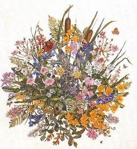 Bloemen van de waddenzee