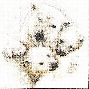 IJsbeer met kleintjes