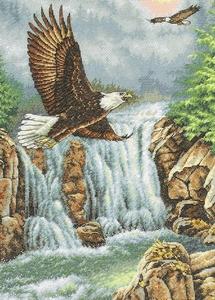 Twee adelaars met waterval
