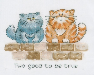 Two good to be true