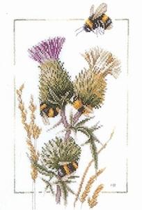 Distel met bijen