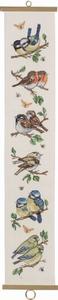 Schellekoord tuinvogels