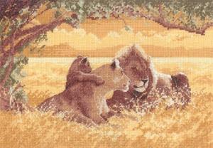 Leeuwenfamilie