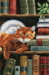 Boekenrek met kat