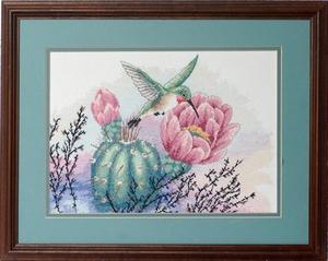 Kolibri met cactus