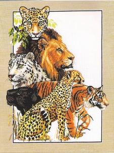 Great Cats (wilde katachtigen dieren)